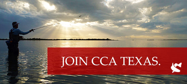 Join CCA Texas